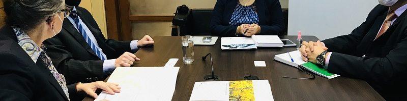 Ministra recibe visita de cortesía de embajador alemán